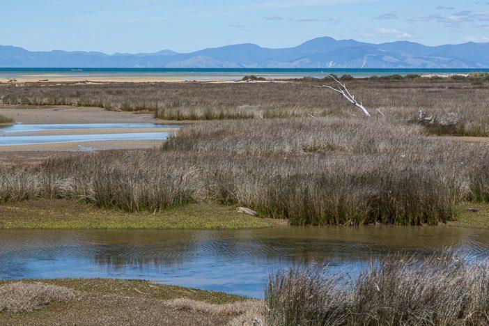 Abschied aus dem Abel Tasman Nationalpark