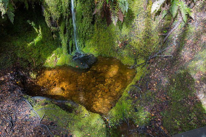 Kleiner Wasserlauf mit Herz