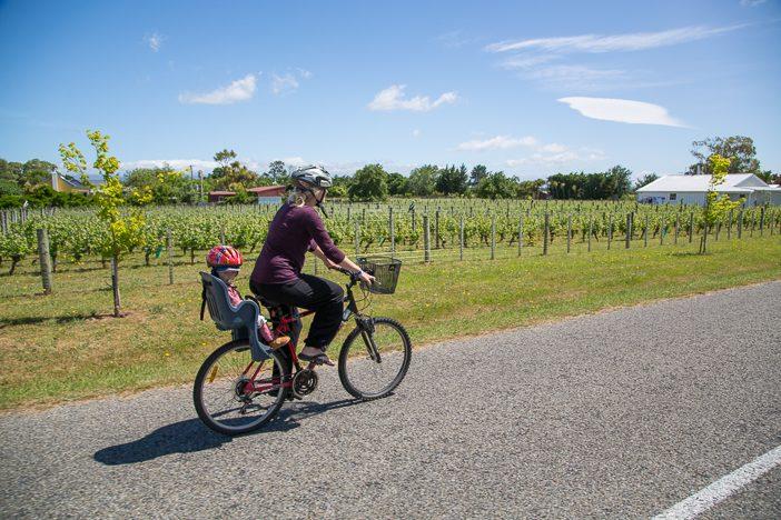 Radeln durch die Weinfelder