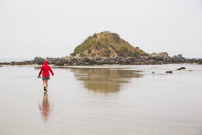 Die kleine Insel Monkey Island - einst Beobachtungspunkt der Maoris um Wale zu sehen
