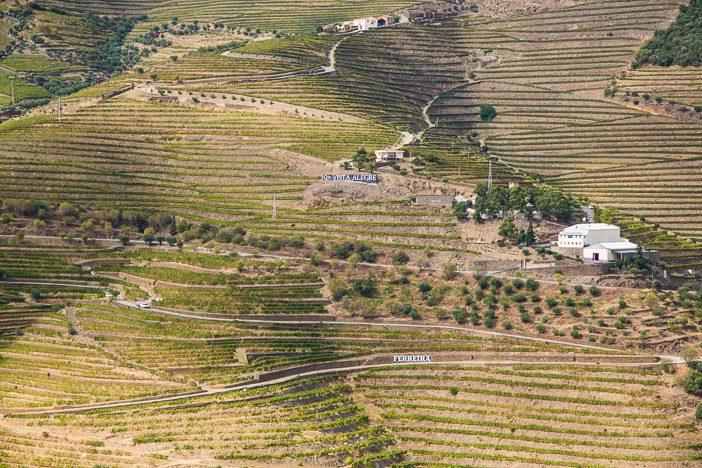 portugal-douro-6249